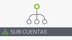 17.Subaccounts_ES